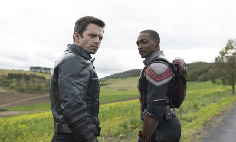 The Falcon and the Winter Soldier - © Marvel Studios / Disney+